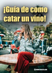 Guía de como catar un vino para principiantes