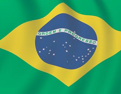 Vinos Brasileños
